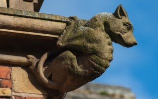A gargoyle on the outside of the Holy Cross College building