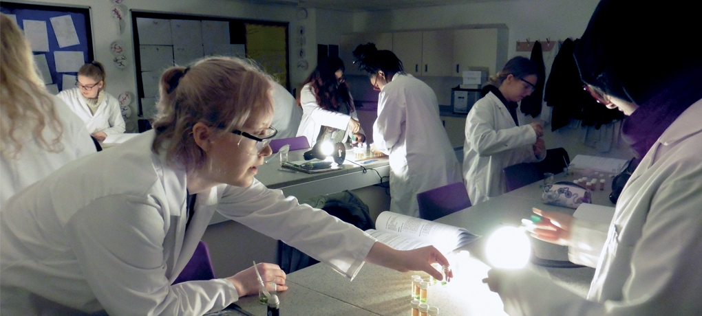 Students taking part in Biology (A-Level) course